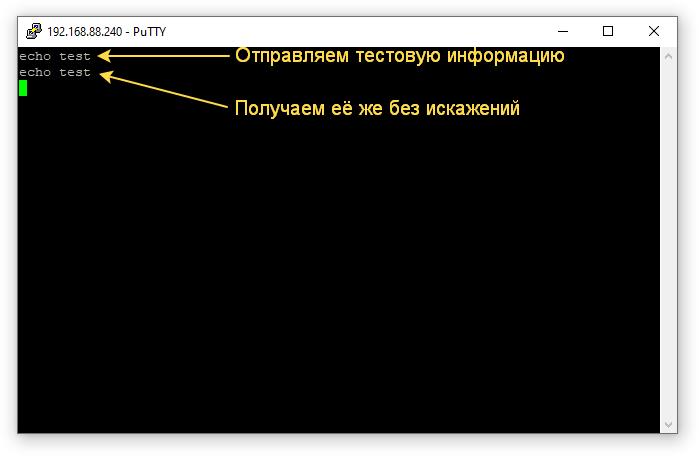 PuTTY echo test